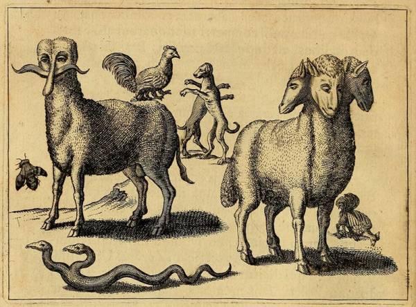 Monstruos ilustrados por Fortunio Liceti en 1665