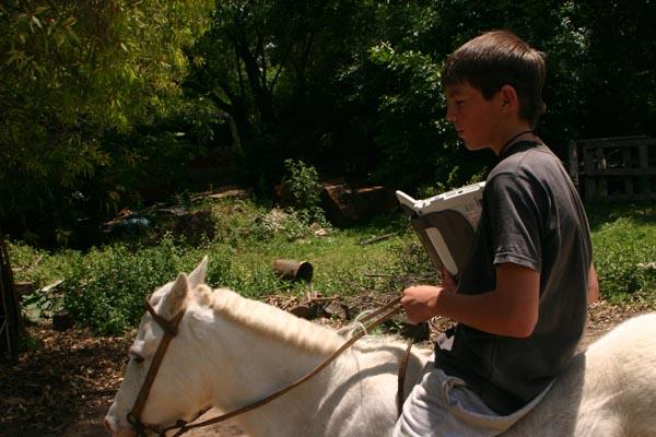 Net a caballo